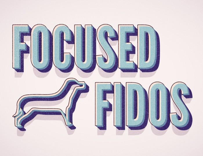 Fofidosclassada