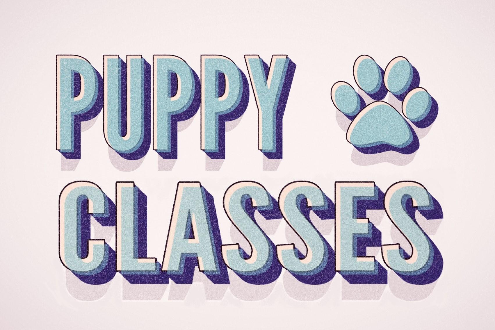 puppystarters
