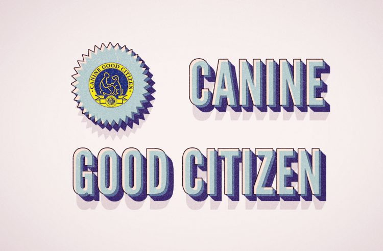 AKC Canine Good Citizen Training