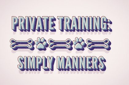 Doggie Manners class north carolina