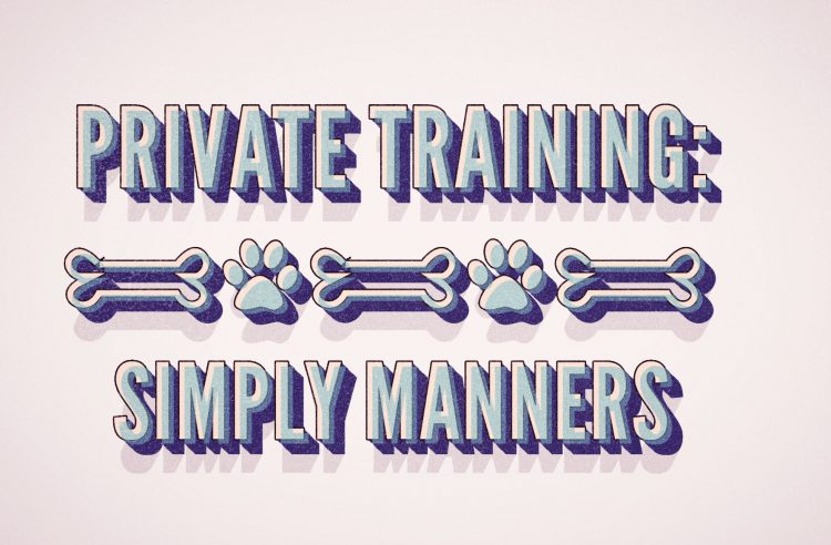 All Dogs Allowed Private Training Program - Simply Manners - Cary NC