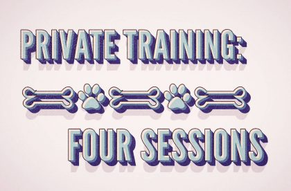 all-dogs-nc-training-pack-4