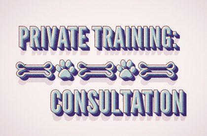 class-ada-training-consult