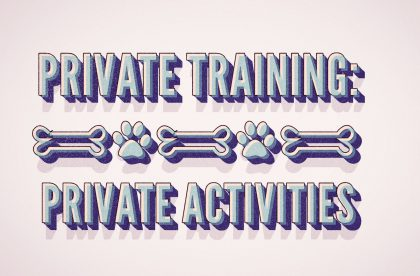 Private Dog Training Cary NC